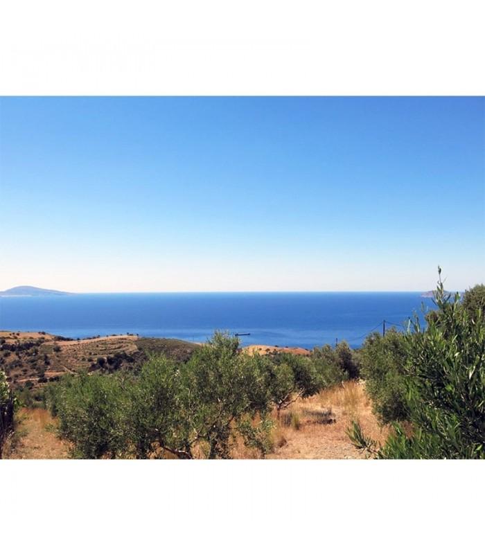 Beautiful building plot in Crete